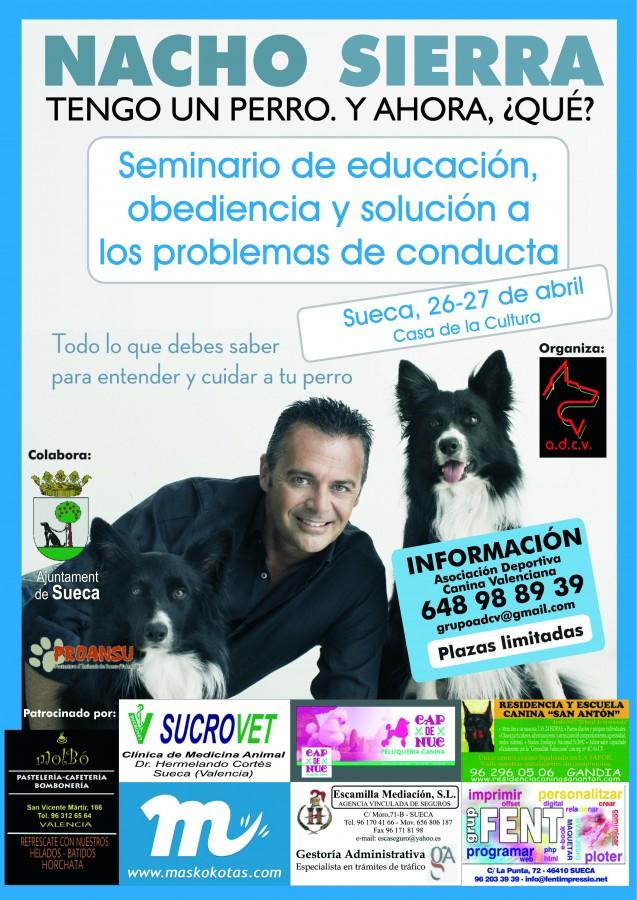 Cartel Seminario Nacho zona 1