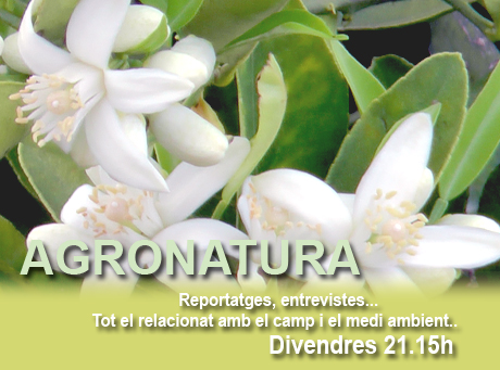 SLIDE_PROGRAMES_Agronatura 02